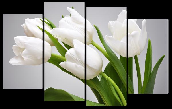 Белые цветы на сером