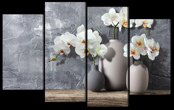 Ветви белых орхидей