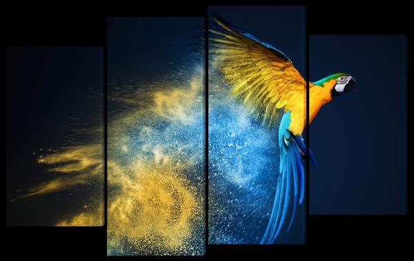 Попугай абстракция