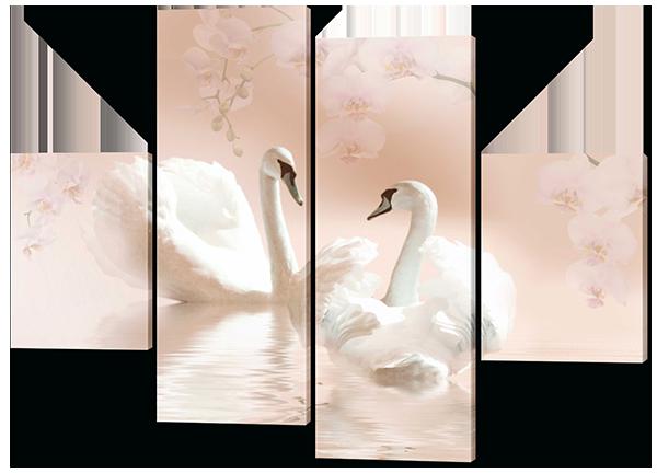 Нежность два лебедя