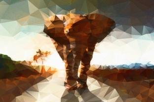 Слон абстракция