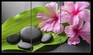Композиция камни и цветы