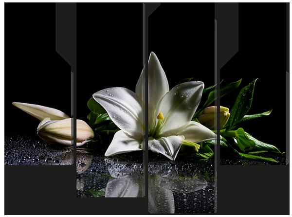Белая лилия на чёрном стекле