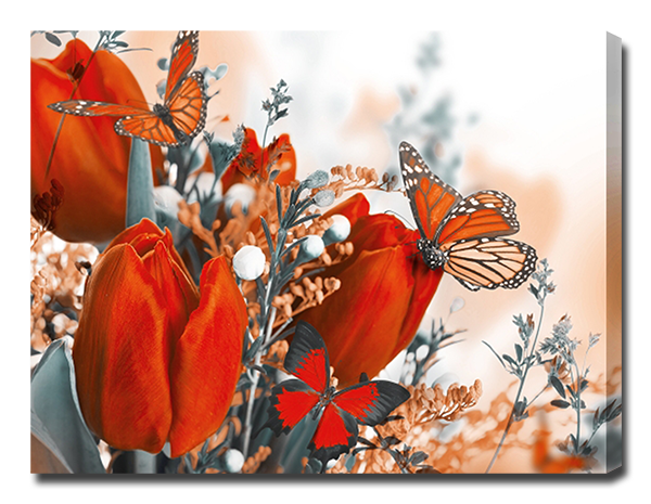 Бабочки на тюльпане