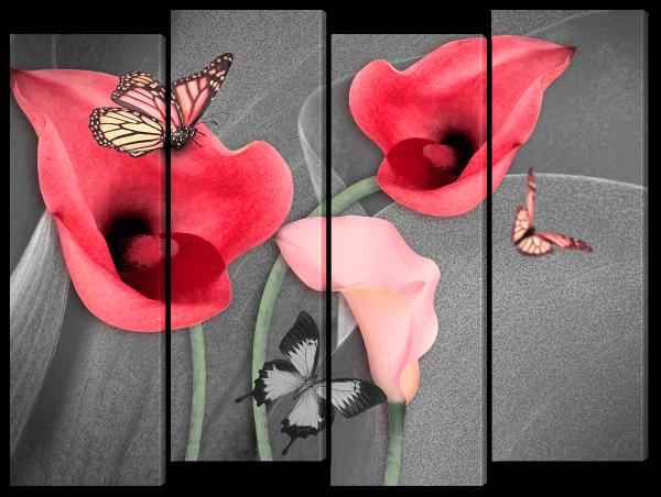 Бабочки на каллах