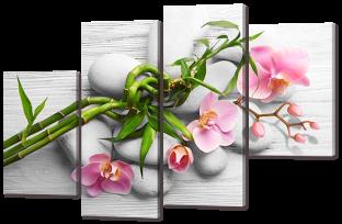 Орхидеи розовые на сером