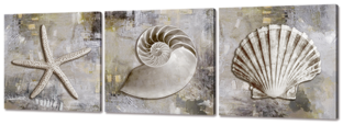 Три морские раковины