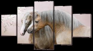 Лошади пара