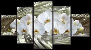 Орхидея на нежно зелёном