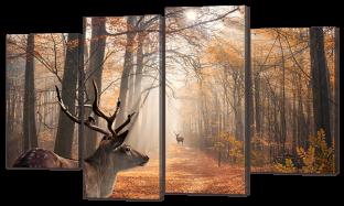 Олени в лесу