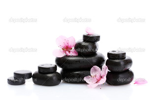 чёрные камни цветы