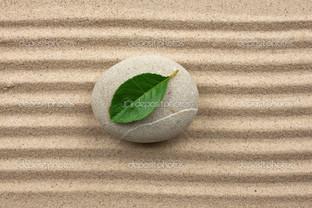лист на камне песок