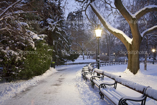 Вена Штадт парк зимнее утро