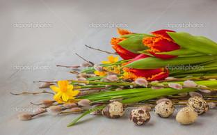 весенний тюльпан