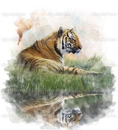 акварель изображение тигр